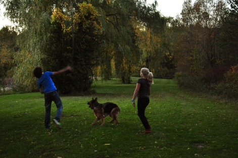 kids, teens, dog, German Shepherd, playing, forest, trees, lake